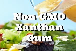 Non GMO Xanthan Gum